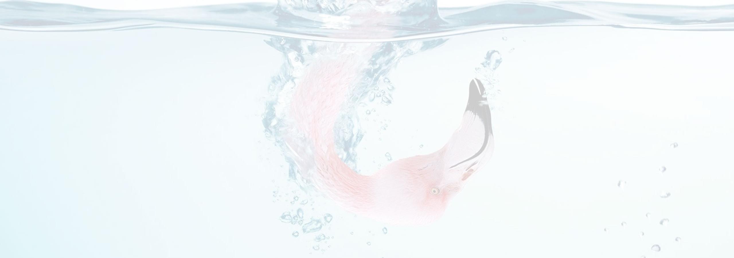 Oproep aan vrouwen met Allergan-Biocell borstprothese